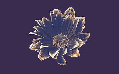 Nobody Painting - Margriet Flower 6 by Celestial Images