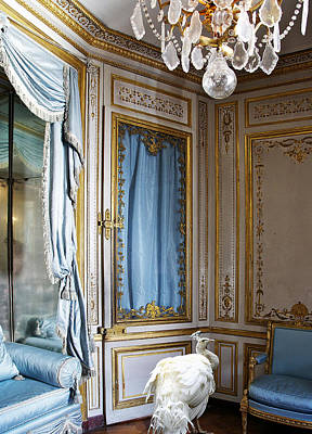 Private Room Digital Art - Marie Antoinette's Pet Peacock At Versailles Palace by Aisha Abdelhamid