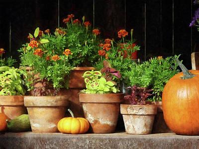 Suburban Photograph - Marigolds And Pumpkins by Susan Savad