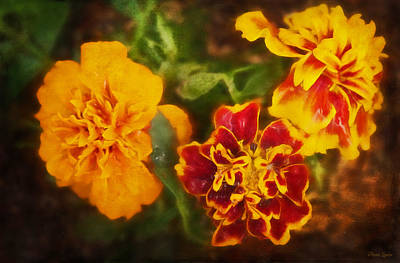 Photograph - Marigolds by Anna Louise