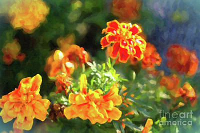 Photograph - Marigolds by Donna L Munro