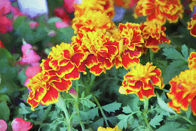 Painting - Marigolds - Painted 5375 by Ericamaxine Price