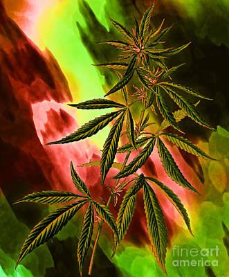 Digital Art - Marijuana Cannabis Plant by Lita Kelley