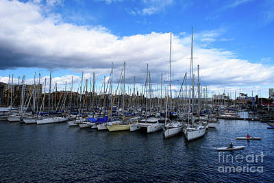 Photograph - Marina 1 by Sandy Molinaro
