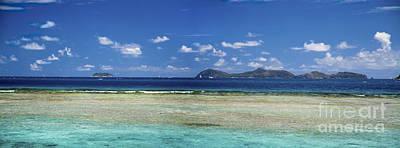 Photograph - Marina Cay Reef by Tim Mulina