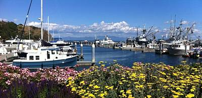 Photograph - Marina In The Spring  by Christy Pooschke