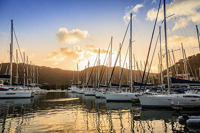 Photograph - Marina In Tortola by Alexey Stiop