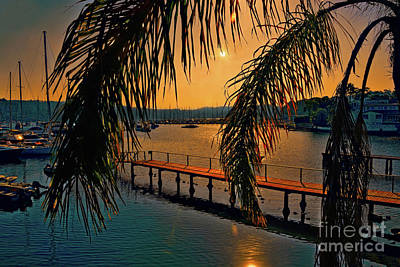Photograph - Marina Palm Sunset By Kaye Menner by Kaye Menner