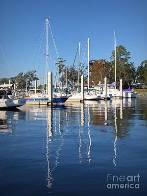 Photograph - Marina Reflections by Luther Fine Art