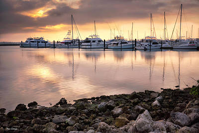 Photograph - Marina Sunrise by Fran Gallogly