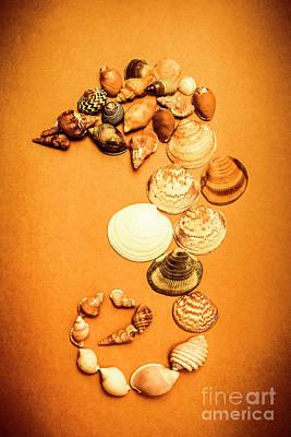 Photograph - Marine Seashell Seahorse Design by Jorgo Photography - Wall Art Gallery