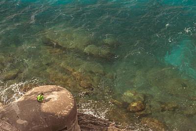Mare Photograph - Marine Study by Chris Fletcher