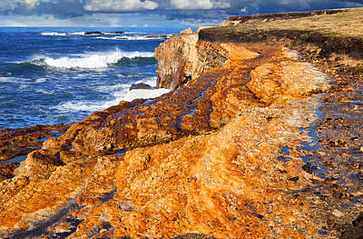 Photograph - Marine Terrace On The Pacific by Kathleen Bishop