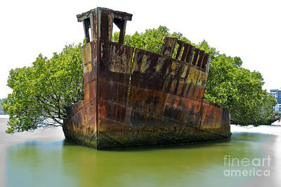 Photograph - Mariner's Cove Shipwreck Homebush Bay by David Iori