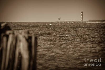 Photograph - Maritime Antiques by Dale Powell