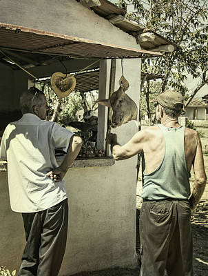 Animal Surreal - Market Stall Cuba by Joan Carroll