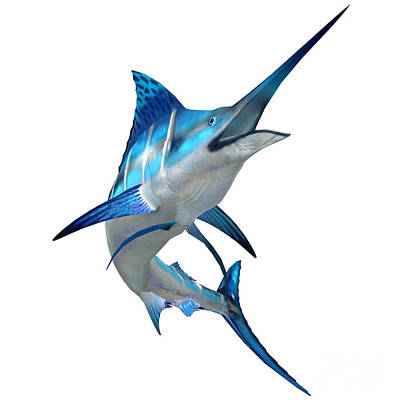 Sea Creature Digital Art - Marlin Fish On White by Corey Ford