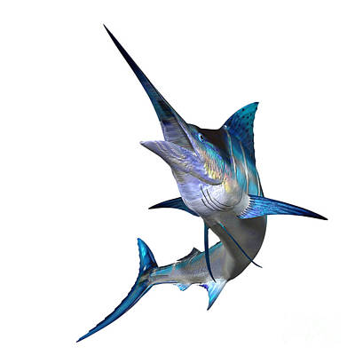 Fish Underwater Painting - Marlin Profile by Corey Ford
