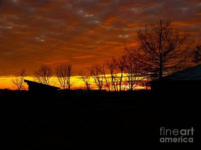 Art Print featuring the photograph Marmalade Sky by Donald C Morgan
