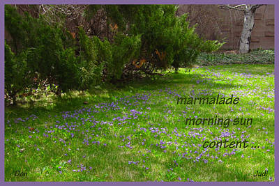 Digital Art - Marmalade Spring Haiga by Judi and Don Hall