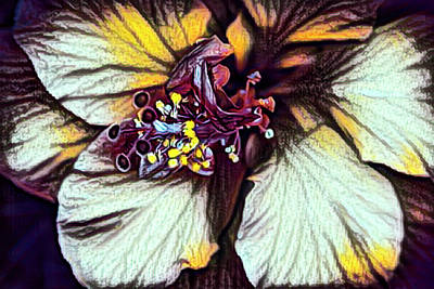 Photograph - Maroon And Gold Hibiscus by Debra and Dave Vanderlaan
