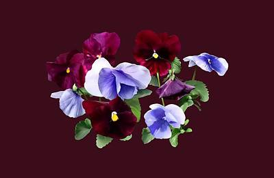 Photograph - Maroon And Purple Pansies by Susan Savad