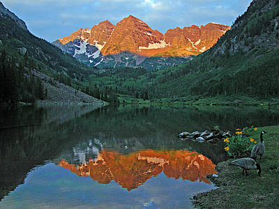 Photograph - Maroon Bells 1 by Diana Douglass