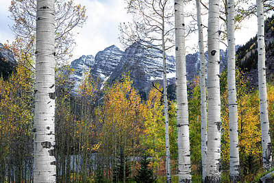 Photograph - Maroon Bells - The Aspen View by The Forests Edge Photography - Diane Sandoval