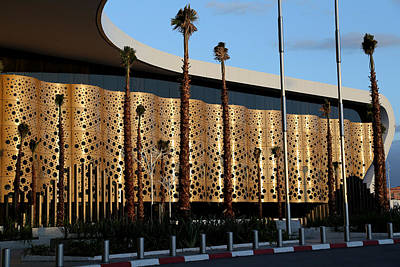 Photograph - Marrakech Airport 1 by Andrew Fare