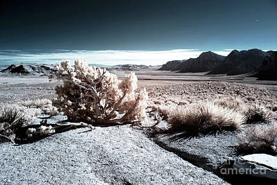 Photograph - Mars At Red Rock Canyon by John Rizzuto