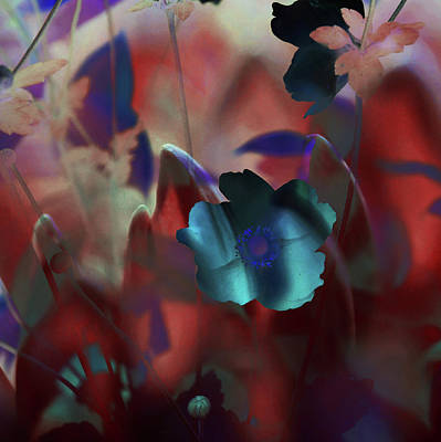 Photograph - Mars Flowers Magic by Jenny Rainbow