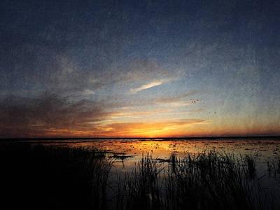 Photograph - Marsh Art by Charles McKelroy