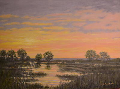 Marsh At Sunset Art Print