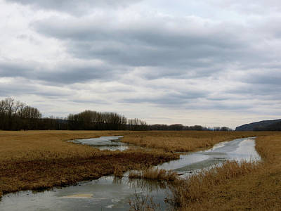 Photograph - Marsh Day by Azthet Photography