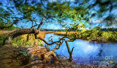Mixed Media - Marsh Dream by David Smith