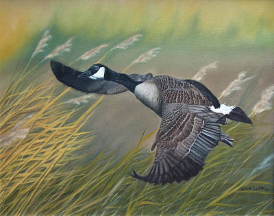 Painting - Marsh Goose by Wade Clark