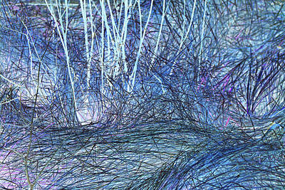 Photograph - Marsh Grass Abstract 2 by Mary Bedy