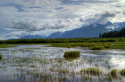 Photograph - Marsh In Alaska by Gloria Anderson