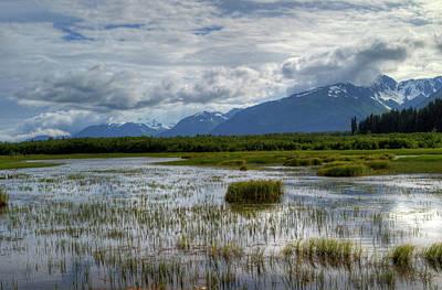 Photograph - Marsh In Alaska by Gloria Anderson