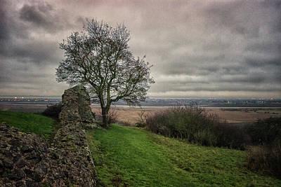Lovely Lavender - Marsh Land by Martin Newman