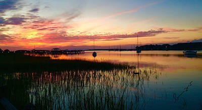 Photograph - Marsh Landing  by Bonnes Eyes Fine Art Photography
