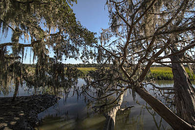 Photograph - Marsh by Mike Dunn