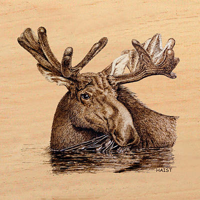 Pyrography - Marsh Moose Pillow/bag by Ron Haist