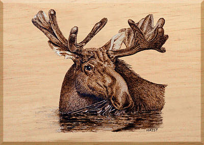 Pyrography - Marsh Moose by Ron Haist