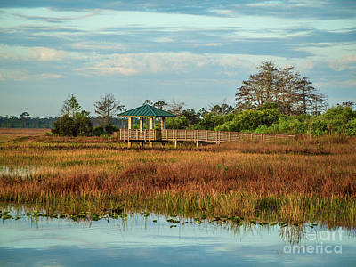 Photograph - Marsh Observation Deck by Tom Claud