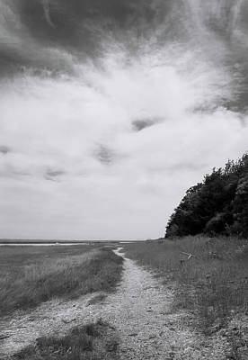 Photograph - Marsh Pathway by Michael Friedman