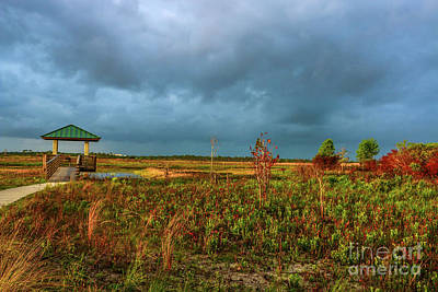 Photograph - Marsh Storm Approaching by Tom Claud
