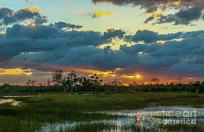 Photograph - Marsh Sunburst by Tom Claud