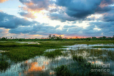 Photograph - Marsh Sunrise Reflections by Tom Claud