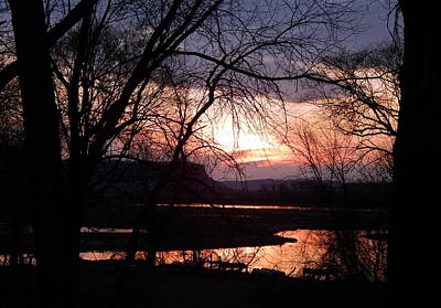 Photograph - Marsh Sunset by Wild Thing